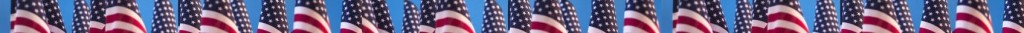 American flags divider